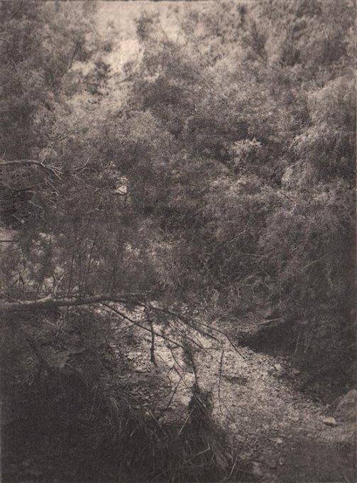 o.T. (Jordan II), 2015, Photoradierung, 15,8 x 11,8 cm